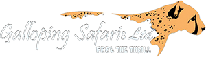 Galloping Safari Logo